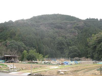 岸和田の田舎
