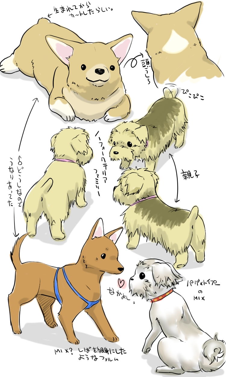 dogsblo.jpg